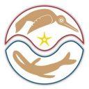 AKIKodiak-Schema-Logo-Icon